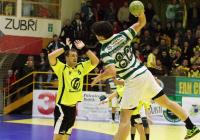 zubri-sporting_lisabon_1842.jpg
