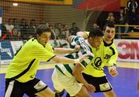 zubri-sporting_lisabon_1844.jpg